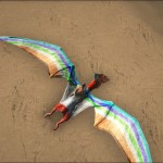 Rainbow Ptera