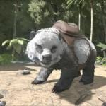 Panda Direbear