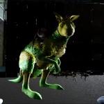 Aussie Kanga