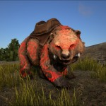 BaffledShadows Direbear – Red
