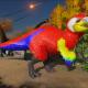 Parrot Dodorex