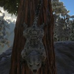 "Snow ""Leopard"""