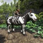 Skeletal Horse Equus