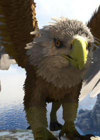 Bald Eagle Griffin | A...