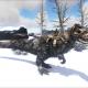 Snow Camo Yutyrannus