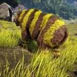 Dire Bee