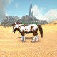 cobar paint horse
