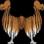 Dodo Tiger