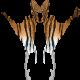 Raptor Tiger
