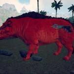 Red Pistol Pig Daeodon